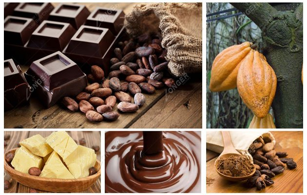How Is Chocolate Made From The Raw Cocoa Beans Step By Step